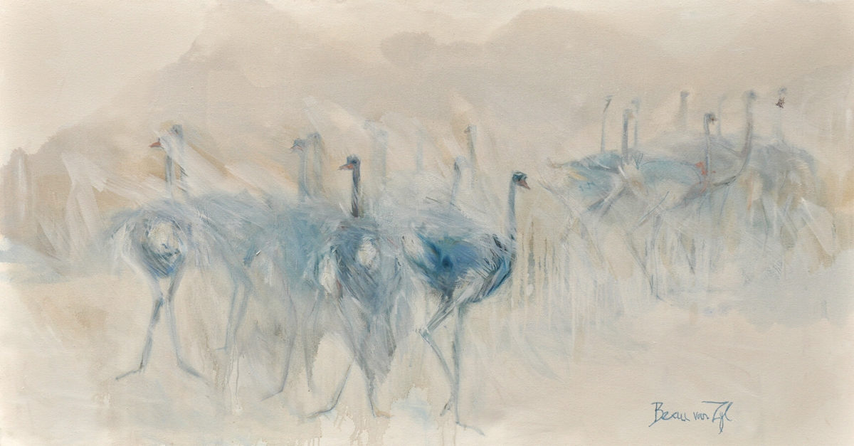 ostriches in the mist